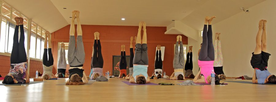 Teaching Yoga after a Yoga Teacher Training